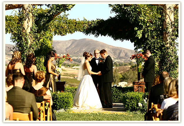 Weddings Among The Vineyards At South Coast Winery
